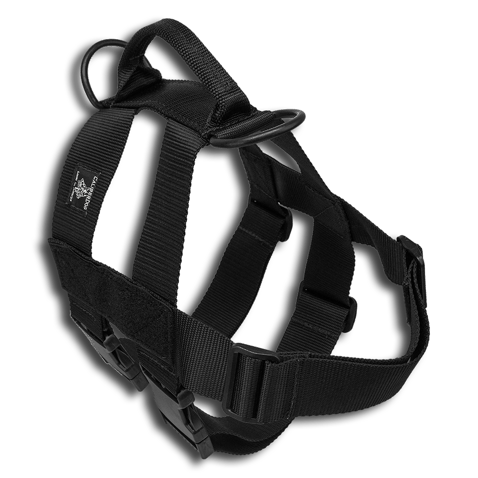 CAILBERDOG PATROL DOUBLE GIRTH HARNESS
