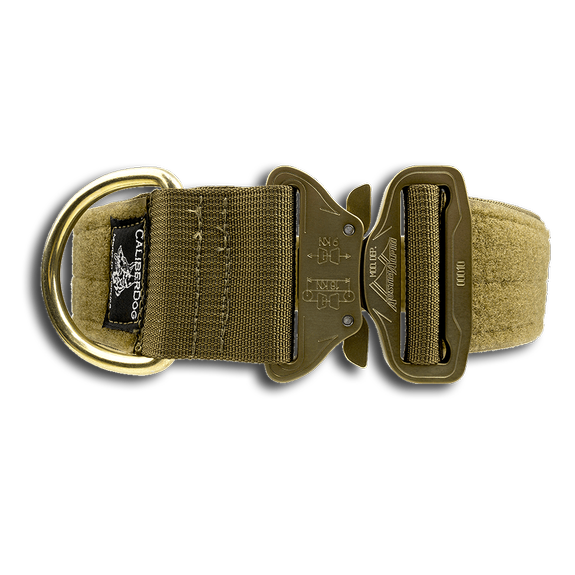 Cobra buckle dog collar
