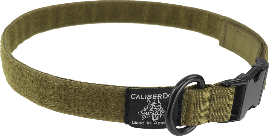 "CaliberDog 1"" ID Collar"
